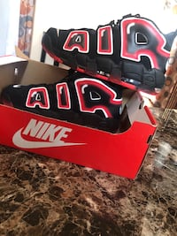 Air Nike size 11 New York, 10456