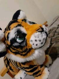 Fureal tiger as seen on TV
