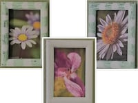 mint and white flower frames/ paintings Aurora