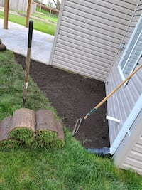 remove new sod and install new sod  Round Lake
