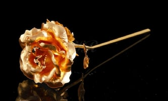 24K Gold-Plated Rose