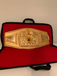 Boxing belt you can put your own LOGO