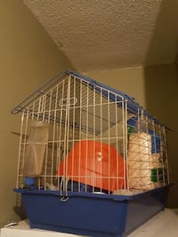 Large cage with feeding and play accessories  Milton, L9T 7J6