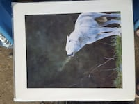 Wolf art print Lakeport, 95453