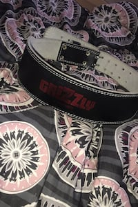 Grizzly Fitness 4-Inch Padded Enforcer Training Belt Vaughan, L4H 2Z8