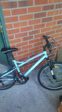 Raliegh mountain bike
