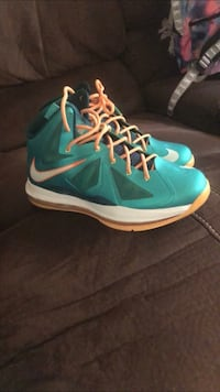 Miami dolphin lebrons Chester, 29706