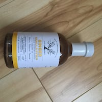 FREE Ginger vanilla syrup - 250 ml 716 km