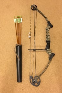 Compound bow with arrows