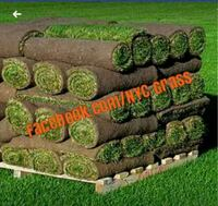 Sod delivery and installation Queens, 11377