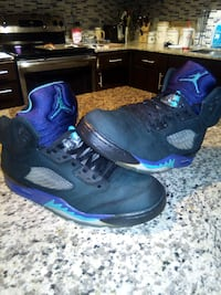 Air Jordan 5s grape ape 1357 mi