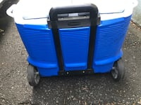 Ice Chest by Rubbermaid Linden, 07036