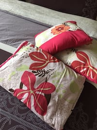 Twin size sheet set with 2 pillow cases  Kelowna, V1W