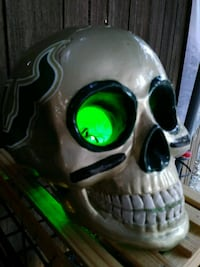 Handcrafted USF skull  Palm Harbor, 34684