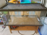 40 gallon breeder tanks with lids Delta, V4C 3B7
