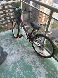very good condition kids mountain bike  Hamilton, L8N 1X2