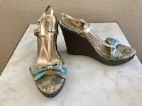 Turquoise and gold wedge shoes. Size 8 fits size 7-8 Chesapeake, 23323