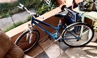Road master bicycle