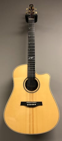 Seagull Artist Studio CW Deluxe QII Acoustic/Electric w/case Columbiaville, 48421