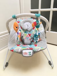 Bright Starts Baby Bouncer Toronto, M5V 2A2
