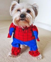 Spider-Man Dog Costume, New with tags