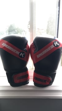 pair of black-and-red Everlast boxing gloves 534 km