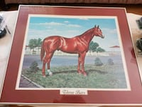 Framed Horse Photo