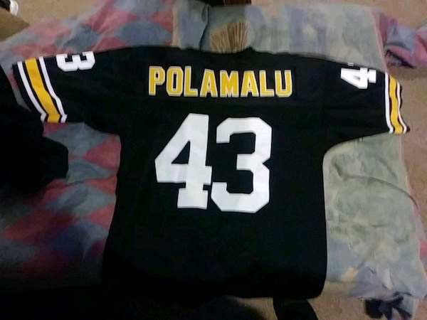 cheap for discount a5ceb d9841 Troy Polamalu Jersey Players of the century