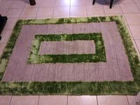 white and green area rug Kissimmee, 34741