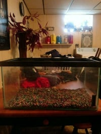 15 gallon fish tank as is holds water  Norridge, 60706