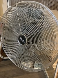 Fan Clifton