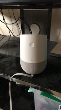 google home Green, 44685