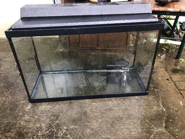 Black framed clear glass fish tank