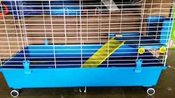 Animal cage guinea or rabbit