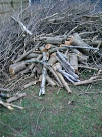 Free brush and firewood Pleasant Hill