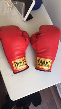 pair of red Everlast boxing gloves Mississauga, L5B 3Y7