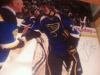 Autographed blown up hockey pic Brett hull and tj  St. Peters, 63376