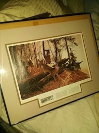 Remington wildlife limited edition picture  Franklin, 02038