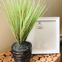 Desktop Foliage Potted Grass Faux Plant Warwick, 02886