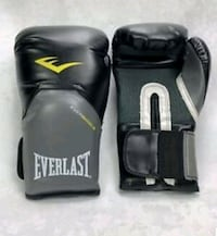 EVERLAST 14 oz training gloves