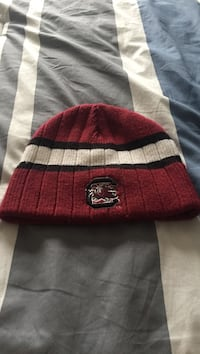 South Carolina beanie