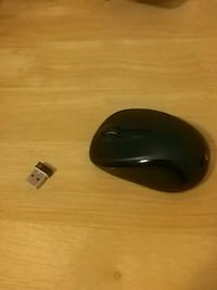 Wireless mouse with AA battery Regina, S4S