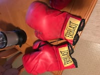 Everlast boxing gloves Albany, 12205