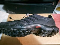 Mens sneakers Gainesville