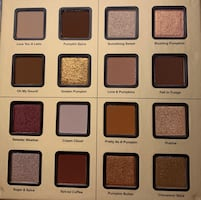 Good faced pumpkin spice eyeshadow palette