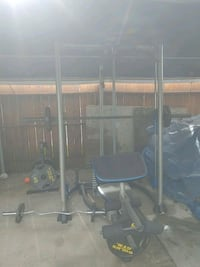 $500 obo Pro-Form XP 300 And Golds Gym Weights Gridley, 95948