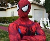 Amazing Spiderman costume Adult