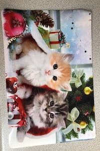 Set of two Christmas kitten placemats