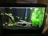 20 gallon fish tank for sale Oshawa, L1G 7A6