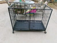 black metal folding dog crate Thurmont, 21788